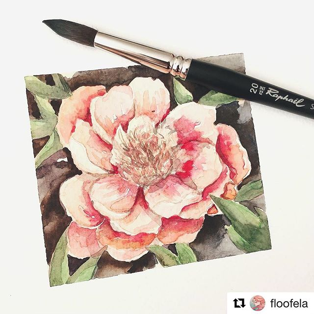 Size 8 Watercolor Brush Series 845 Round Raphael SoftAqua Synthetic